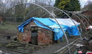 The completed hoops across the melon house